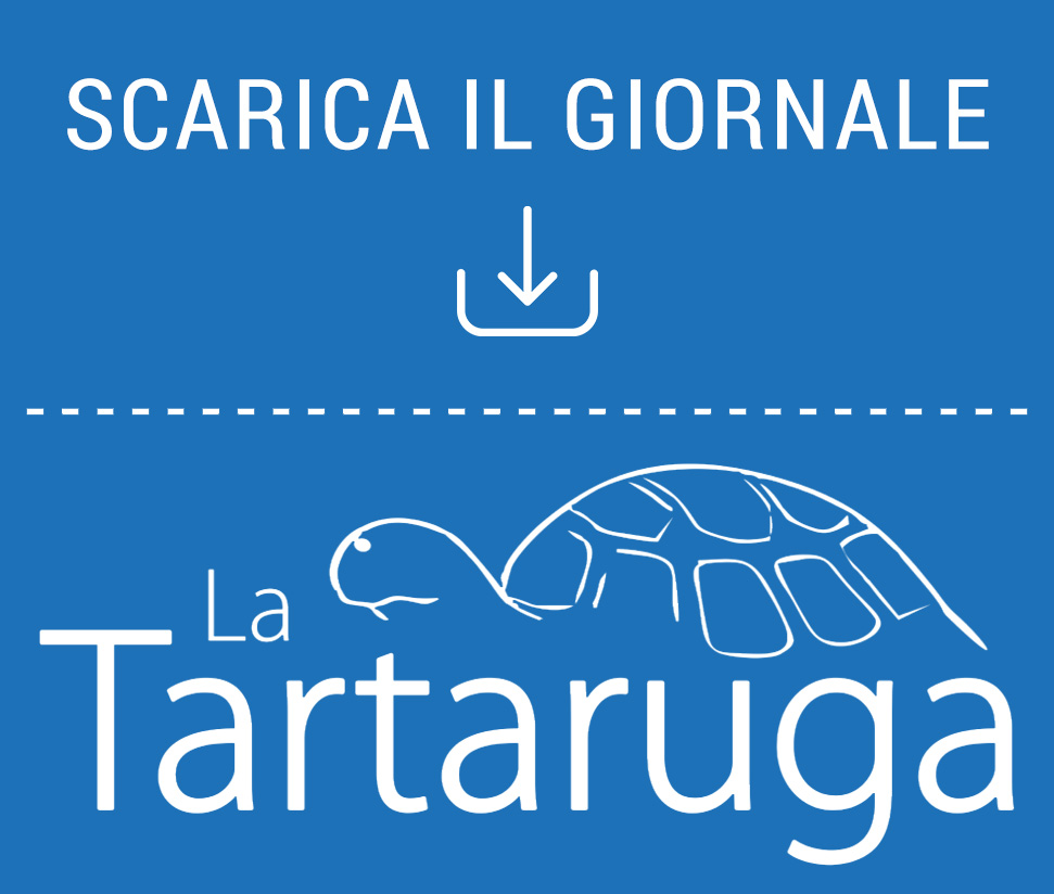 Scarica La Tartaruga